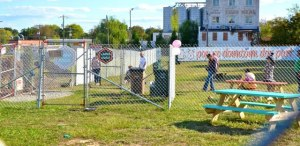 dog-park_for_web